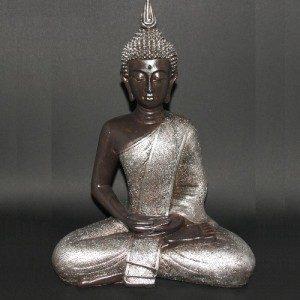 Thaise Boeddha mediterend