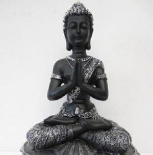 Tibetaans Boeddha zwart-zilver..