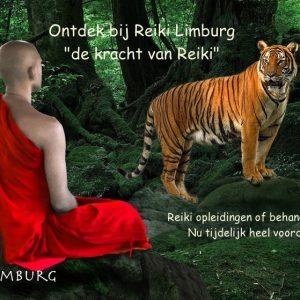 de kracht van Reiki