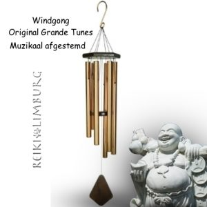 Windgong Brons