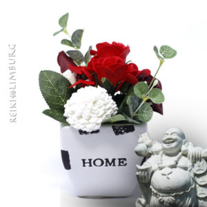 Home red rose pot