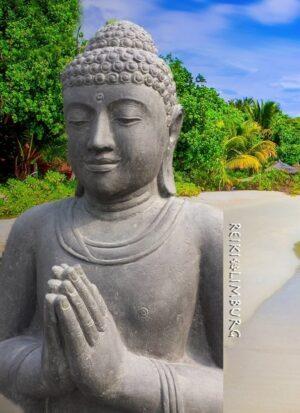 Boeddha op Lotus..